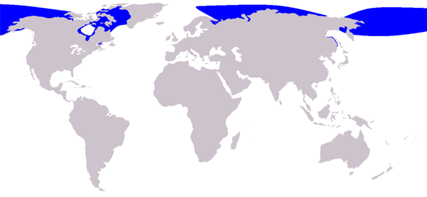 1024px-Cetacea_range_map_Beluga