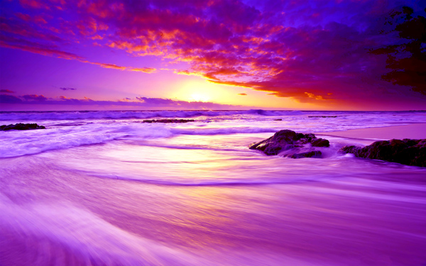 Beach Of Paradise Wide Desktop Background