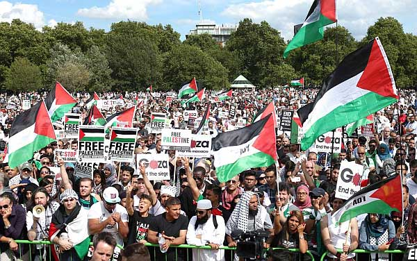 gaza_9aug14_demo_hyde_pk_600