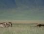 Documentary: Africa The Serengeti(Video)