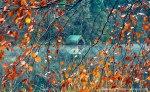 autumn-photography-2-11__880