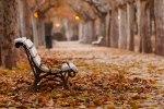 autumn-photography-2-14__880