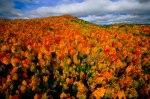autumn-photography-2-20__880
