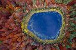autumn-photography-2-4__880