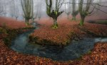 autumn-photography-2-6__880