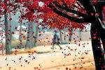 autumn-photography-2-7__880
