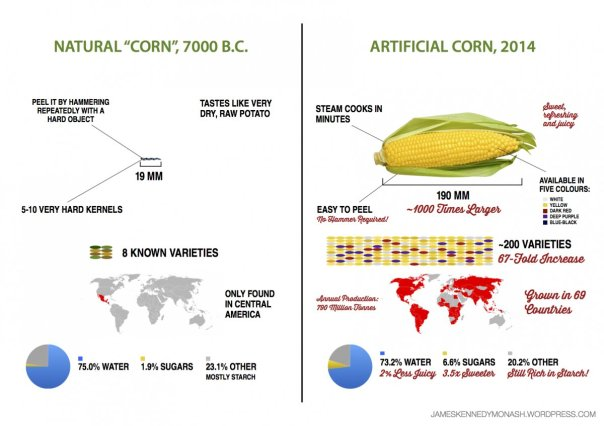 veggie_evolution_5