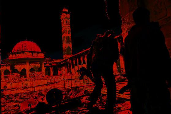 syria-mosq