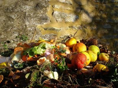 Fruits-e1299550673226