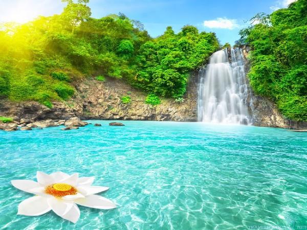 nature-paradise-600x450